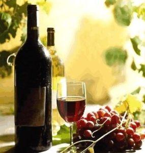 Wine-Grapes-1